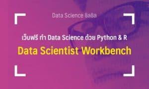 data scientist workbench