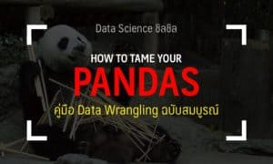 pandas python guide thai data science