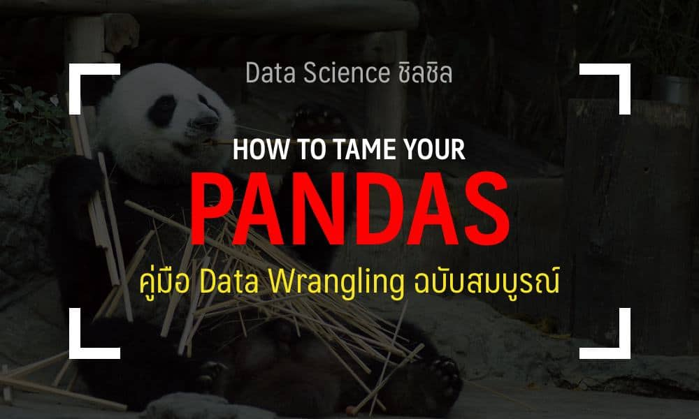 Cheatsheet วิธีใช้ และเทคนิคใน Pandas (Python) ฉบับสมบูรณ์