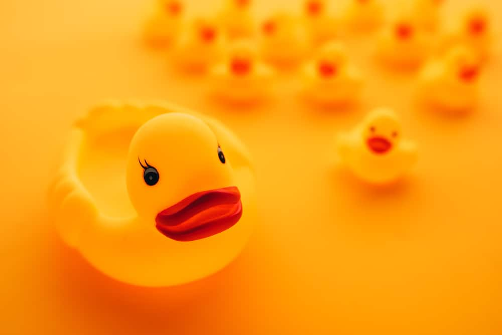 rubber duck debugging data