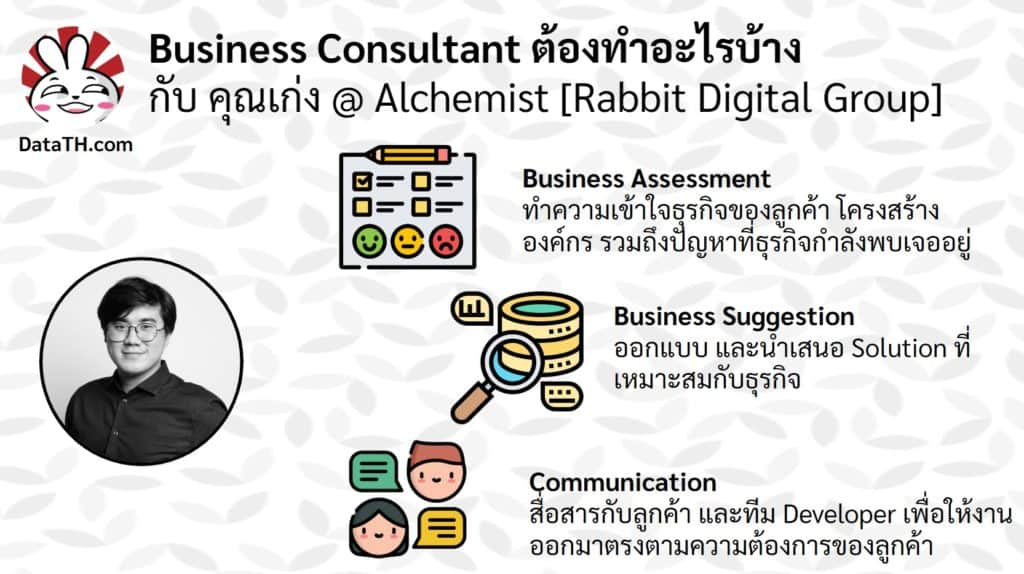 business consultant work data