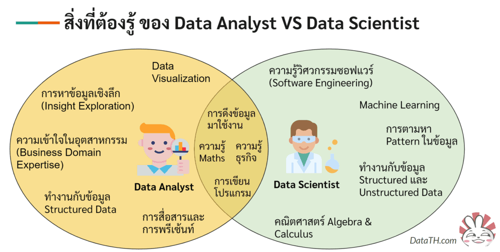 ความรู้ที่ต้องใช้ ของ Data Analyst VS Data Scientist