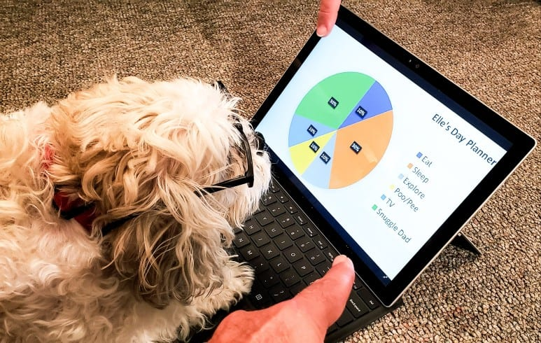 data analysis skills