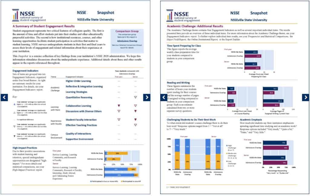 data report sample nsse